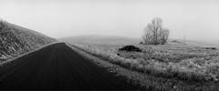 Eastern Washington (austin granger) Tags: washington abandoned farmhouse palouse fog winter ice gravelroad ruin decay rural impermanence frost noblex