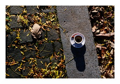 pleasures of autumn (rainbowcave) Tags: autumn leaves cup espresso pavement herbst bltter sonnig tasse schatten brgersteig
