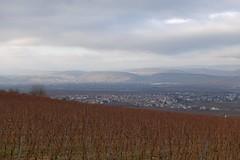 Johannisberger Türmchen - Blick auf Ockenheim und nach Bingen  (Belichtungszeit: 1/200, Blende: 5,6, Brennweite entsprechend 35 mm-Kleinbild: 56)