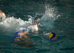 2C040300 (roel.ubels) Tags: len euro league waterpolo sport topsport utrecht uzsc 2016 krommerijn women