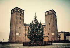 "Waiting to see him ""on"" (Federico Fulcheri Photo) Tags: federicofulcheriphoto fortess fortification italy fossano christmastree christmas tree wallet city old tower architecture castle snapseed canon"