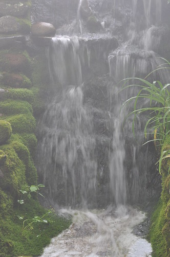 2618 Falls Blowing Rock Img_13779