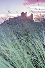 Bamburgh Castle from the sand dunes (loftylion9) Tags: storm sunrise gales northumberland bamburgh holyisland lindisfarne stmarys blyth amble stmaryslighthouse dunstanburghcastle embleton coquetisland blythbeach lowhauxley bambirghcastle