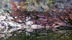 Upper Emerald Pools (rachaellegrimsrud) Tags: november reflections utah zionnationalpark nationalparks emeraldpools waterscape 2015 emeraldpoolstrail springdaleut upperemeraldpool emeraldpoolshike