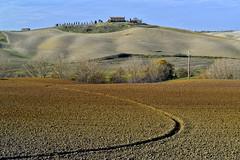 In der Nähe von Asciano (Crete Senese) (Wolfgang.Grilz) Tags: unesco tuscany siena montepulciano valdorcia toskana cretesenese