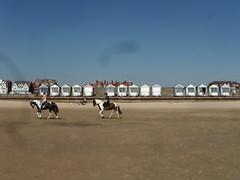 Horse riding on the Beach (lacoupe) Tags: england horse beach northwest lancashire lytham riding beachhuts stannes fyldecoast
