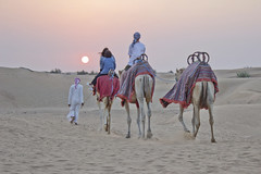 Sunset from the desert (j.ezquerro) Tags: deser dubai uae emiratos camel traveling life lifestyle sun sunset light colours