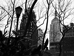 Bryant Park, NYC (Dan_DC) Tags: nyc newyorkcity newyork manhattan midtown empirestatebuilding bryantparkhotel americanradiatorbuilding skyscrapers citypark urbanpark park bryantpark uniquetonewyorkcity uniquelynewyork