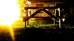 Sunrise in Web Kingdom (kirilko) Tags: web sunrise bench vermont usa sunrays fujix100 fujifixepixx100 finepixx100 northhero