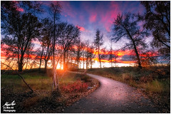 Autumn Sunset in the Park (Moe Ali Photography) Tags: sunset sky blue clouds pink red glow path fishcreek park trail outdoor nature panorama landscape canon7dmarkii canon1018mmstm moealiphotography trees alberta