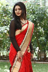 South Actress Deepika Das Traditional Photos Set-1 (20)