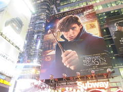Fantastic Beasts And Where to Find Them Billboard Times Square 7769 (Brechtbug) Tags: fantastic beasts and where find them harry potter universe continued movie billboard film poster billboards advertisement transportation theatre broadway 7th avenue 45th street near 42nd theater district new york city 11082016 ad pop popular art mural tile two daniel radcliffe ron rupert grint hermione emma watson j k rowling wizarding world etc director david yates eddie redmayne times square nyc