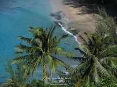 5D4_9395_DPP.PS.Comp2048 (SF_HDV) Tags: canon5dmarkiv canon5dmark4 5dmarkiv 5dmark4 5dm4 kee keebeach napali napalicoast kalalautrail kauai hawaii beach ocean seaside coast palm