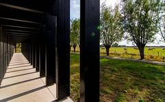 _DSC6731 (durr-architect) Tags: info centre zwin heartland belgium architecture cousse goris nature park wood structure border aday16 group area green trees