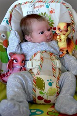 Making new friends (Sakura Dragonhearth) Tags: baby dragons aileendoll aileen shy rot petdoll bjd ball jointed doll