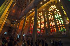 NH0A3804s (michael.soukup) Tags: barcelona sagradafamlia sagrada familia basilica church stainedglass color colorful windows nave interior gaudi churchoftheholyfamily catholicchurch artnouveau architecture neogothic spain catalonia