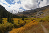 Deathcanyon7 (laelia74) Tags: wyoming grandtetons fall nature outside hiking mountains