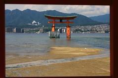 Floating torii of Miyajima (iorus and bela) Tags: iorus japan holiday vakantie 2016 hiroshima bela miyajima itsukushima shrine floatingtorii torii lowtide