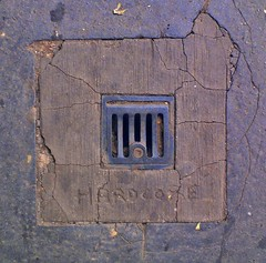 Urban Porn (tcees) Tags: drain concrete path cracks barking