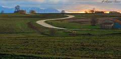 (antonio.canoci) Tags: irpinia campagna curva strada verde canon 100d 1585usm