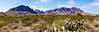 Chisos Mountains (Jerry Sargent Photography) Tags: landscape pano chisosmountains panograph texas desert chihuahuadesert bigbend