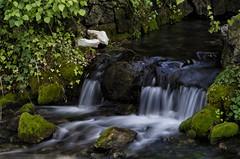 Lago di Posta Fibreno (Marco_Colasanti) Tags: postafibreno fibreno lago lake ciociaria frosinone water acqua longexposition
