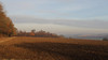 Darent Valley (AONB Winter) (Adam Swaine) Tags: fields uk ukcounties landscapes england englishlandscapes english winter swaine canon kentishlandscapes kent darentvalley britain british seasons trees sunlight rural ruralkent countryside counties darent valley