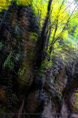 DSCF7161 (kingston Tam) Tags: waterfall river rapids sedimentaryrock stone ancientcity guizhou wetlandpark park canyon landscape naturallandscape mountain scenery streetscape oldfashioned streetphotography castle hawkers peddler fujifilmxt1