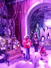 Christmas in NYC (seznz) Tags: nyc christmas newyorkcity christmasinnyc