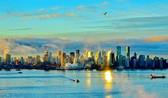 Seagull gliding above cityscape in morning sunlight and lifting sea fog (peggyhr) Tags: peggyhr sunrise seafog seagull cityscape harbour seabus reflections canadaplace clouds sunlight ocean burrardinlet vancouver bc canada thegalaxy super~sixbronzestage1 charliesgrouplevel1 favtop2049fav thelooklevel1red level1peaceawards niceasitgets~level1 level1photographyforrecreation thelooklevel2yellow infinitexposurel1