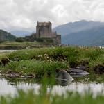 Eilean Donan Castle thumbnail