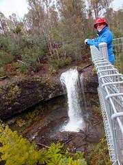 View from the top (LeelooDallas) Tags: australia tasmania tarraleah landscape dana iwachow steve fuji finepix hs20 exr water waterfall tree forest