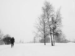 *** (amm78) Tags: 2016 epl3 olympusm12mmf20 stpetersburg city mirrorless olympus snow street winter sanktpeterburg saintpetersburg russia ru