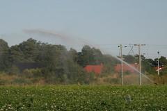 20130720_IMG_0168 (anriro96) Tags: elements heemsen nienburg feld ernte gras getreide blau blue sky rohrsen weser sun summer