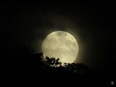 Moon Rise over Wheeling (jcsullivan24) Tags: moon fullmoon moonrise