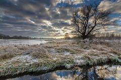 frosty morning ([-ChristiaN-]) Tags: rauhreif frosty sky landscape ice eis klte cold morning lake pond