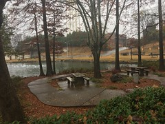 Spring Park on a rainy day (King Kong 911) Tags: spring park water fall ducks swan pond