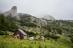 Mountain Magli (Aleksandar Simovi) Tags: mountain rain fog clouds landscape canonef1740mmf4lusm foca bosna planina sutjeska republikasrpska magli bosnaihercegovina pejzaz canon6d maglic tjentiste nationalparksutjeska nacionalniparksutjeska