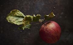 Pom-01 (barretphilippe26) Tags: fruit automne rouge marron pomme