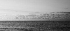 Thinking Space -0776 (WendyCoops224) Tags: new morning sea monochrome canon eos suffolk space calm melancholy breathe contemplative 2015 70d 24105mml ©wendycooper
