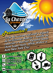 Flyer para La Choza Growshop (Bastian Klak) Tags: design la flyer weed graphics icons choza growshop