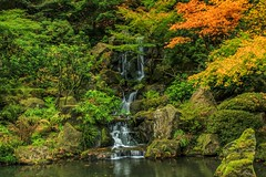 Portland Japanese Garden Waterfall (Cole Chase Photography) Tags: autumn fall canon portland japanesegarden pacific northwest t3i