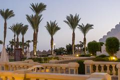 Danil Kolodin_Oriflame Egypt_high_DKL_7500