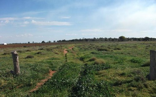 Part Farm 2082 Griffith Road, Murrami NSW