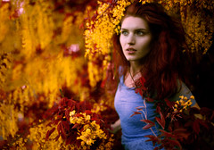 Look for the Answer (Lichon photography) Tags: portrait woman women female lady girl redhead grace explore flickr pretty flowers flower floral jumpin jump jumping hair motion bush