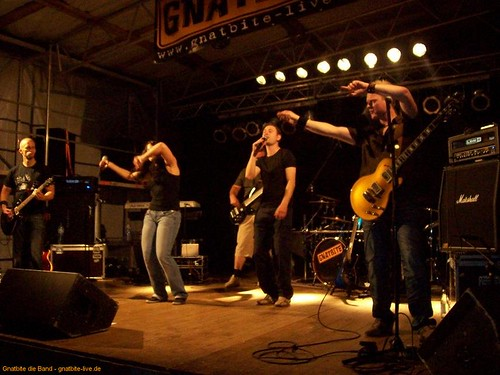 12_3-tages-fest_westerstetten-10072010jpg