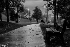 ((mig)) Tags: park parque bw blancoynegro camino gijn banco bn xixn pericones