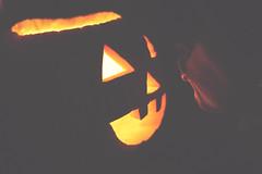 Turning Jack-o-lanterns into princes - 304:365 (susivinh) Tags: halloween pumpkin kiss jackolantern calabaza beso besar