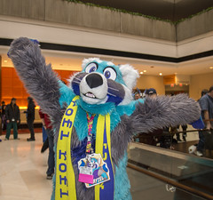 DSC_9456 (Acrufox) Tags: chicago illinois furry midwest december ohare rosemont convention hyatt regency 2014 fursuit furfest fursuiting acrufox mff2014
