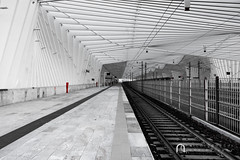 Italy, Reggio Emilia, Mediopadana Station (NC Atelier) Tags: train station canon eos 750d bw black white photo photography red railstation architecture contemporany architects architect santiago calatrava italy reggio emilia